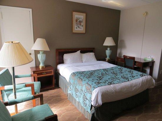 Americana Hotel: habitacion