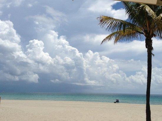 Enchanted Isle Resort: View