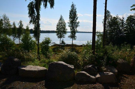 Jokiniemen Matkailu: Вид из окна номера, до озера 20 метров
