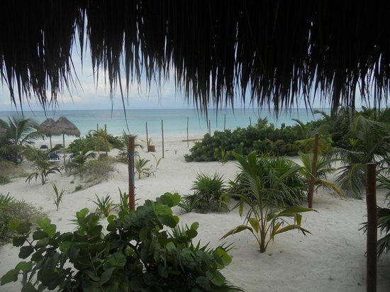 Almaplena Eco Resort & Beach Club: Ocean view from Dining terrace