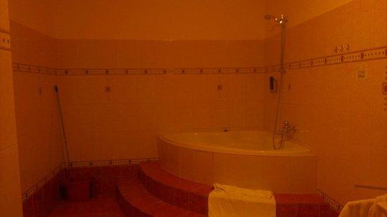 Aparthotel Vega: Ванная