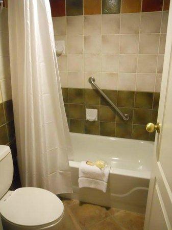 Sheraton Suites Calgary Eau Claire : Shower