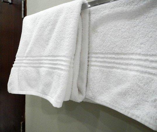 A'Zambezi River Lodge : towel