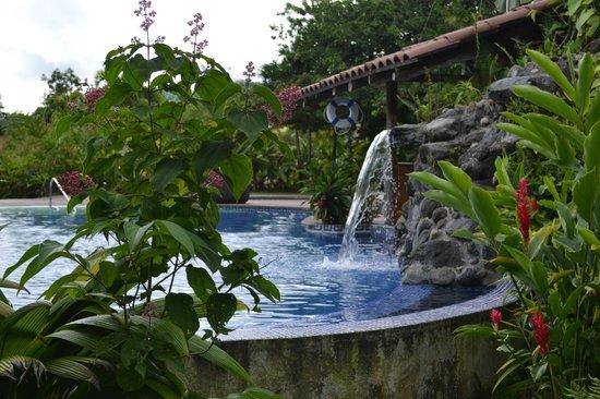 Casa Luna Hotel & Spa: Piscina.