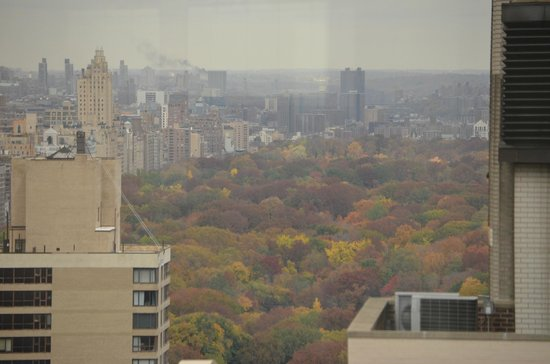 Sheraton New York Times Square Hotel: Vista para o Central Park