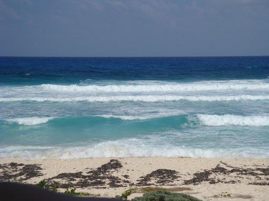 Plongee Grand Cozumel Diving : plage