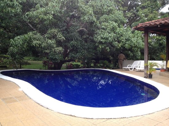 Hotel Aeropuerto Costa Rica: Small but beautiful pool
