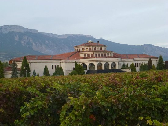 Thabuca Wine Tours: Perfect setting for winery