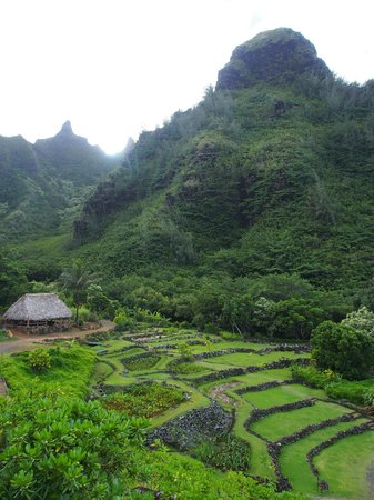 Limahuli Garden and Preserve: Beautifully Sculpted