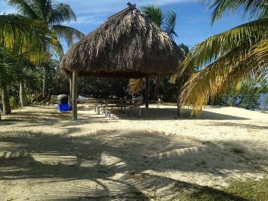 Gulf View Waterfront Resort: The tiki picnic area