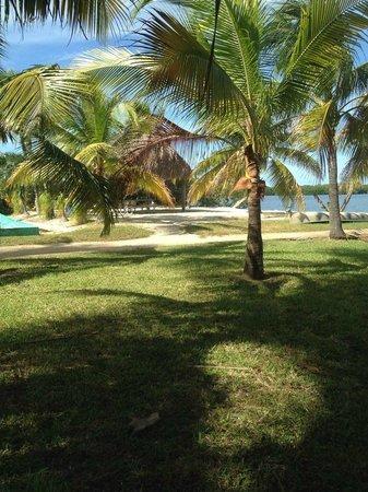 Gulf View Waterfront Resort: Beautiful grounds