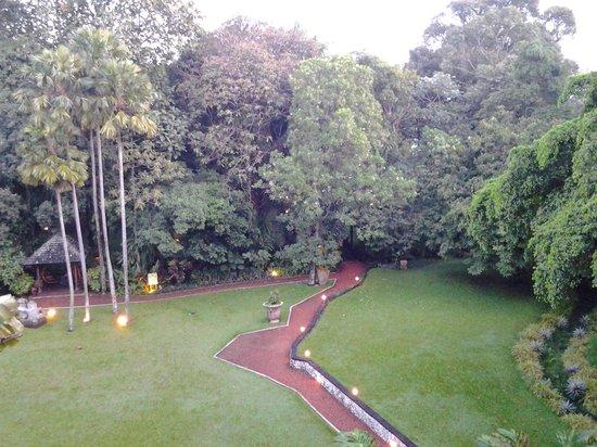 Hotel Novotel Bogor Golf Resort and Convention Center : taman yang indah