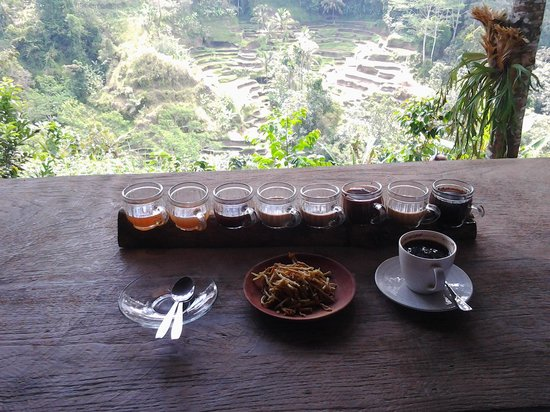 Teba Sari Bali Agrotourism: luwak coffee, samples of various teas and coffees with lovely rice field terrace view