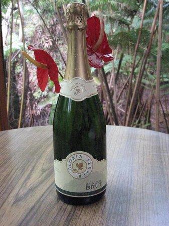 Volcano Inn: Cheers!