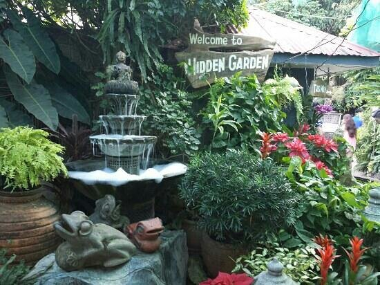hidden garden - Hidden Garden