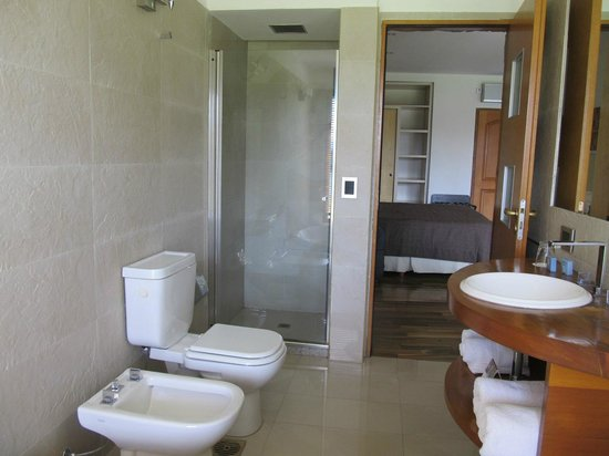 Rochester Hotel Bariloche: Shower compartment. Excellent water pressure.