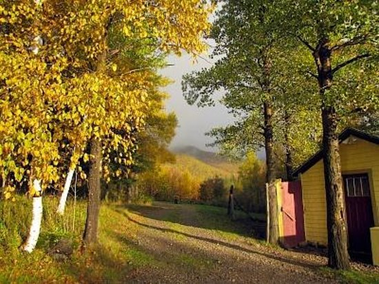 The Maven Gypsy Bed & Breakfast & Cottages : out the back door.