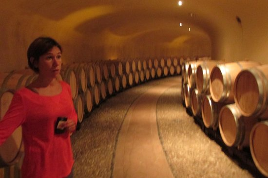 Ruffino - Tenuta di Poggio Casciano: Lydia telling us about the cellar