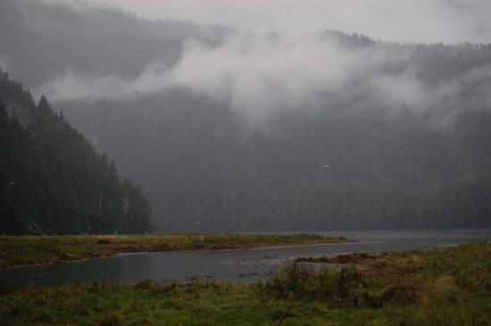 Spirit Bear Lodge : Gorgeous scenery