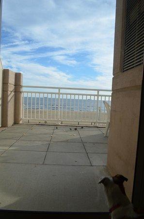 Residence Inn Virginia Beach Oceanfront: feeding the birds
