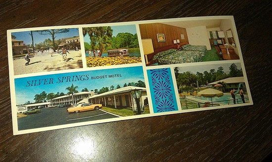 Silver Springs Motel : 1974 Postcard given to me from Mollie.