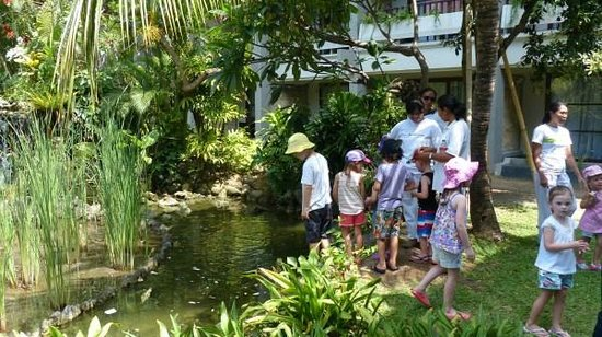 Bali Dynasty Resort: Fish feeding