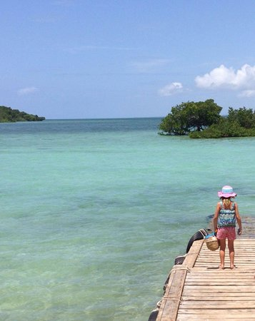 The Sands At Chale Island: Our visit to Chale - arrival on the jetty