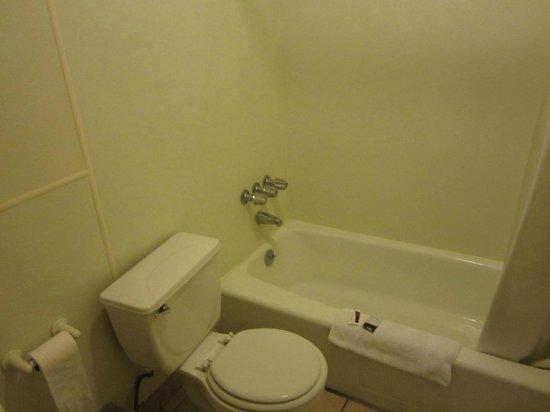 LAX Suites : bathroom