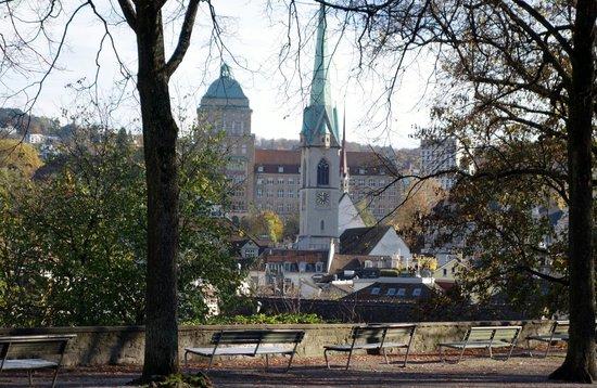 Lindenhofplatz: Для средневекового города, закованного в камень, такой сквер в центре города - большая удача