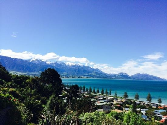 Art & Design Gallery: View of Kaikoura from Absolutely