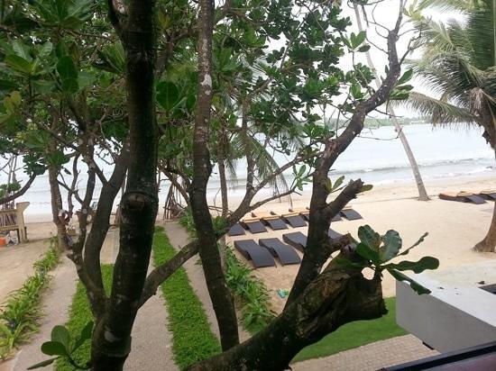 CoCo Bay Unawatuna : Seaview from balcony.