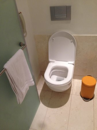 Tight space between door and toilet picture of the h for Doors for tight spaces