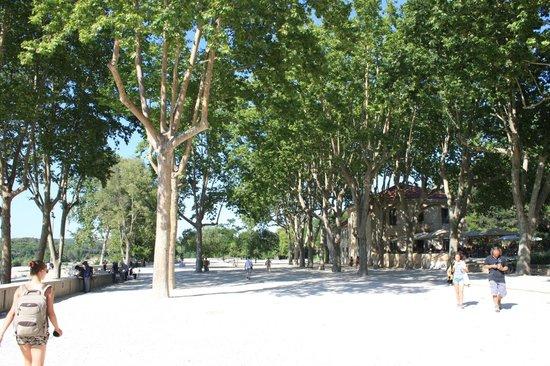 Pont du Gard : окрестности