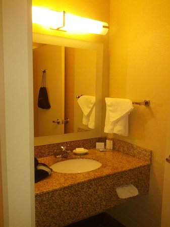 SpringHill Suites Boston Peabody: toilet