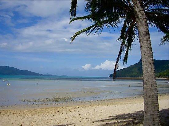 Write away whitsunday islands
