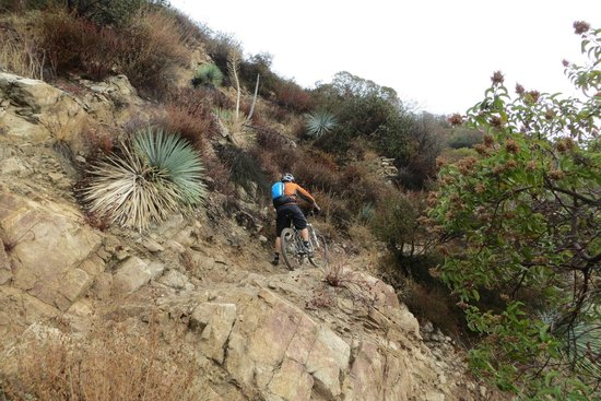 Mount Lowe Railway trail: watch out for mountain bikers