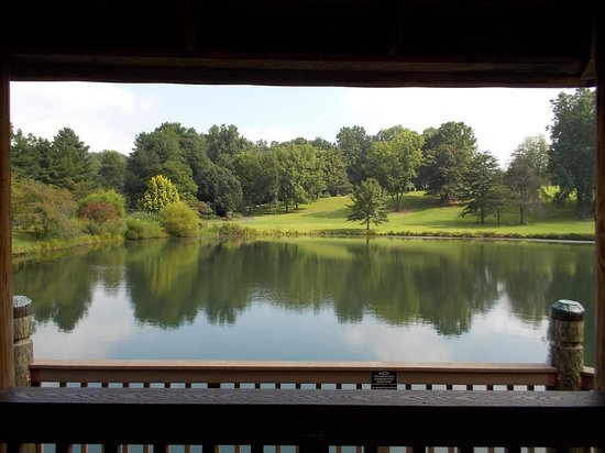 Meadowlark Botanical Garden : View from Koi Pond