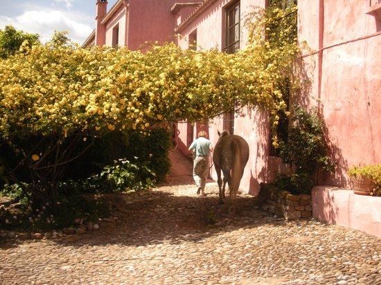 La Almuna: la almuña courtyard