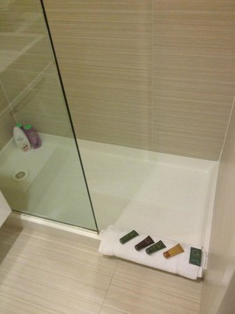 Metro Apartments : shower from the inside