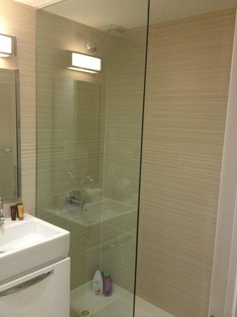 Metro Apartments : Clean good sized shower