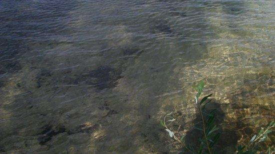 Озеро Свитязь: лучшие советы перед посещением - Tripadvisor