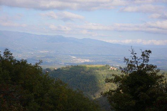 Badia a Coltibuono: Stunning views