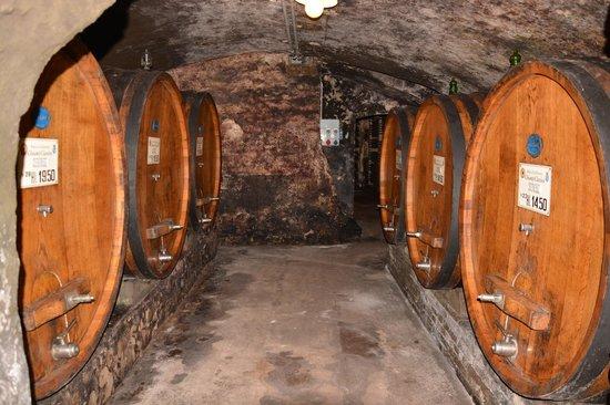 Badia a Coltibuono: Wine cellars