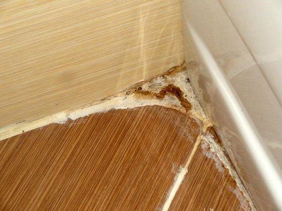 Queen Elizabeth Elite Suite Hotel & Spa: Gunge in bathroom
