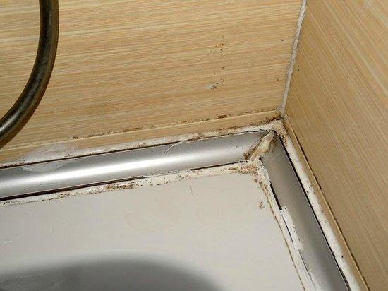 Queen Elizabeth Elite Suite Hotel & Spa: Gunge in corner of bath/shower