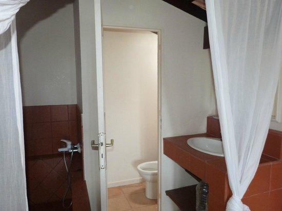 Sous Le Soleil des Tropiques: salle de bains