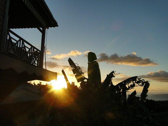 """Domaine Karaibes : Vue de la terrasse du loft """"La Gwada"""" (vers l'ouest)"""