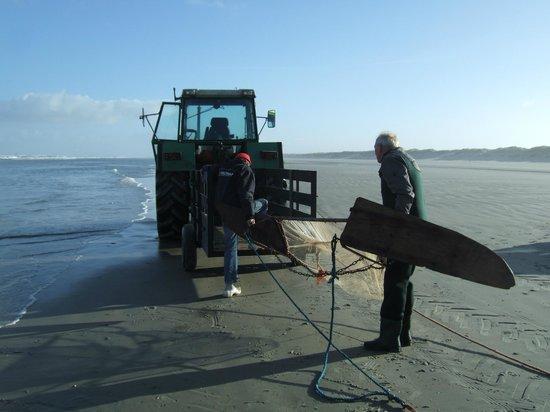 WestCord Hotel Noordsee : Garnalen vissers op het strand bij paal 13