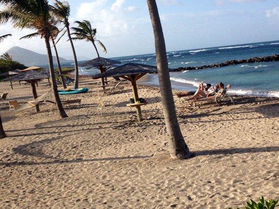 Nisbet Plantation Beach Club : Windswept beach looking towards St. Kitts.