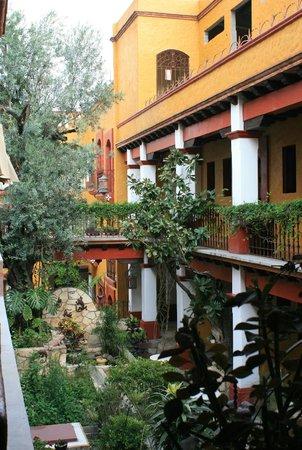 Hotel Casa del Sotano : Garden